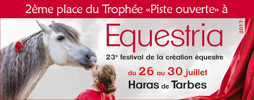 """2ème place au trophée """"Piste ouverte"""" d'Equestria 2017"""