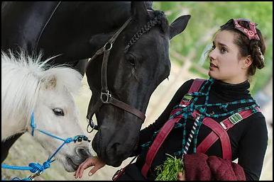 Complicité avec deux chevaux