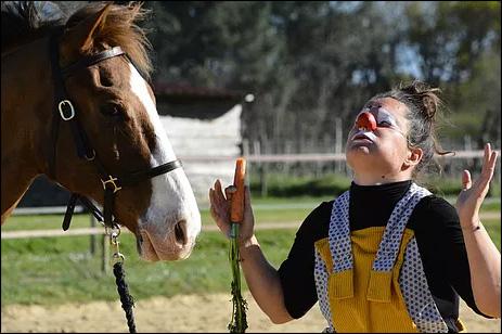 J'adore les carottes! Pas toi cheval?